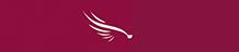 Service Innovation Programme in Doha